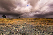 rural landscape, South Australia showing barren field with golden light and threatening storm clouds on the horizon