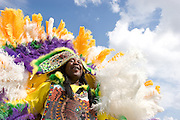 A few Mardi Gras Indian tribes on Super Sunday near Bayou St. John