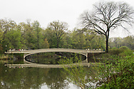 Spring greens at the Lake in Central Park with a view of Bow Bridge
