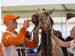 Joyce Van Den Berg, (NED), Run Du Colombier - Endurance - Alltech FEI World Equestrian Games™ 2014 - Normandy, France.<br /> © Hippo Foto Team - Leanjo de Koster<br /> 25/06/14