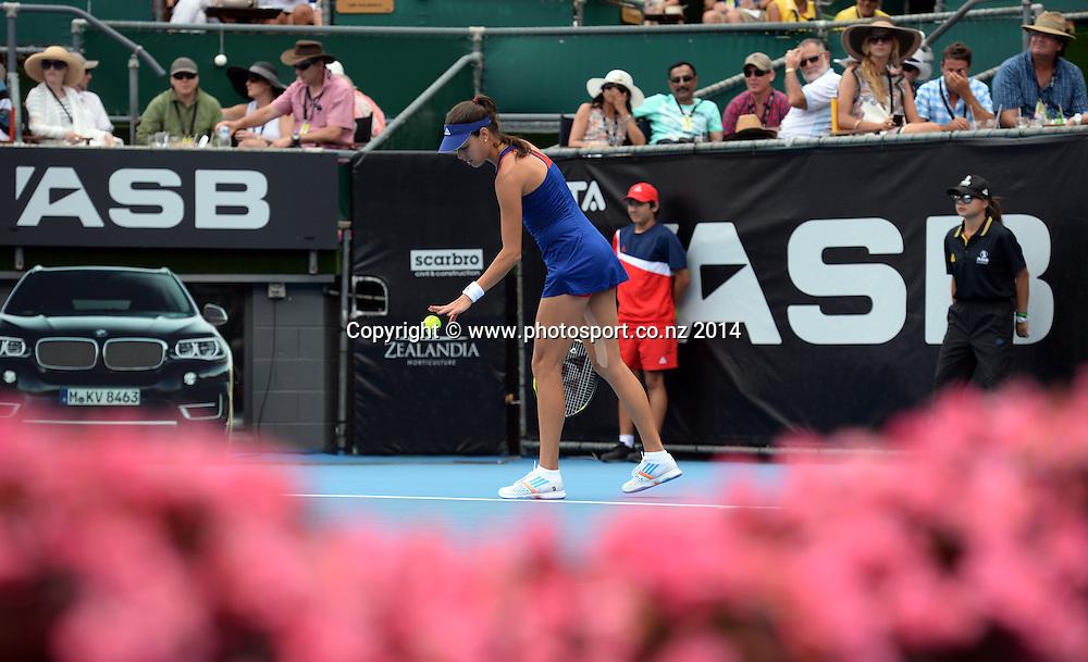 Women's singles final. Ana Ivanovic versus Venus Williams at the ASB Classic Women's International. ASB Tennis Centre, Auckland, New Zealand. Saturday 4 January 2014. Photo: Andrew Cornaga www.photosport.co.nz