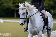 2018-02-11 Dressage Wellington - Trentham