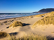 The beach at Nehalem Bay State Park
