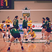 3rd year middle blocker, Emma Matheson (2) of the Regina Cougars during the Women's Volleyball home game on Sat Jan 19 at Centre for Kinesiology, Health & Sport. Credit: Arthur Ward/Arthur Images