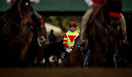 ARCADIA, CA - DECEMBER 30: Jockey Kent Desormeaux has the look of focus as his mount Silent Bird makes his way to the track at Santa Anita Park on December 30, 2017 in Arcadia, California. (Photo by Alex Evers/Eclipse Sportswire/Getty Images)