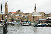 Israel, western Galilee, Acre, The Harbour now a fishing port. The Clocktower and El Bahar Mosque can be seen in the background