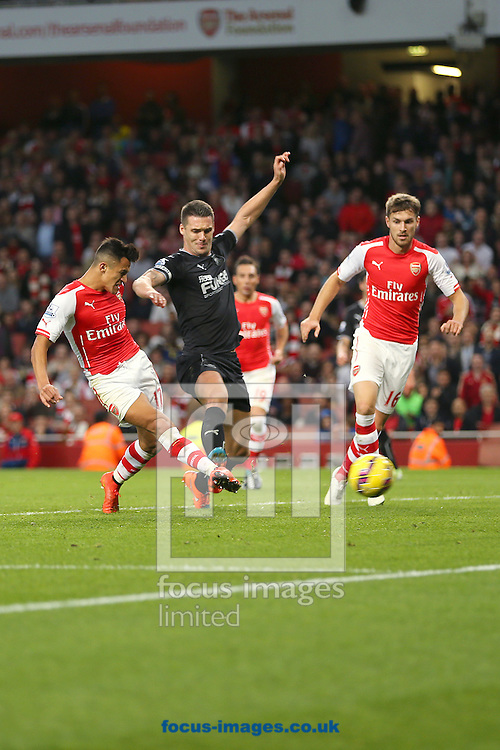 Alexis Sanchez of Arsenal scores the third goal of the Barclays Premier League match against Burnley at the Emirates Stadium, London<br /> Picture by Richard Calver/Focus Images Ltd +447792 981244<br /> 01/11/2014