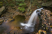 B. Reynolds Falls, Ricketts Glen State Park, Pennsylvania