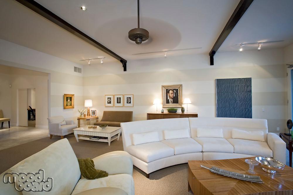 Luxury interior design living room