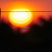 Barbed Wire at Sunset on a South Texas Ranch.