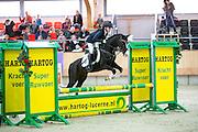 Evi van Rooij - Armando<br /> KNHS Indoorkampioenschappen 2016<br /> © DigiShots