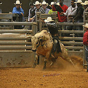 Bryan Rodeo Part II