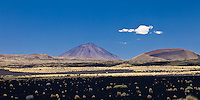 VOLCAN PAYUN LISO (3.833 m.s.n.m.) Y OTRO CONO VOLCANICO, Y ESTEPA DE COIRONES (Festuca gracillima - fam. poaceas) EN EL SUELO DE PIEDRAS VOLCANICAS, PAMPA NEGRA, RESERVA PROVINCIAL LA PAYUNIA (PAYUN, PAYEN), MALARGUE, PROVINCIA DE MENDOZA, ARGENTINA (PHOTO © MARCO GUOLI - ALL RIGHTS RESERVED)