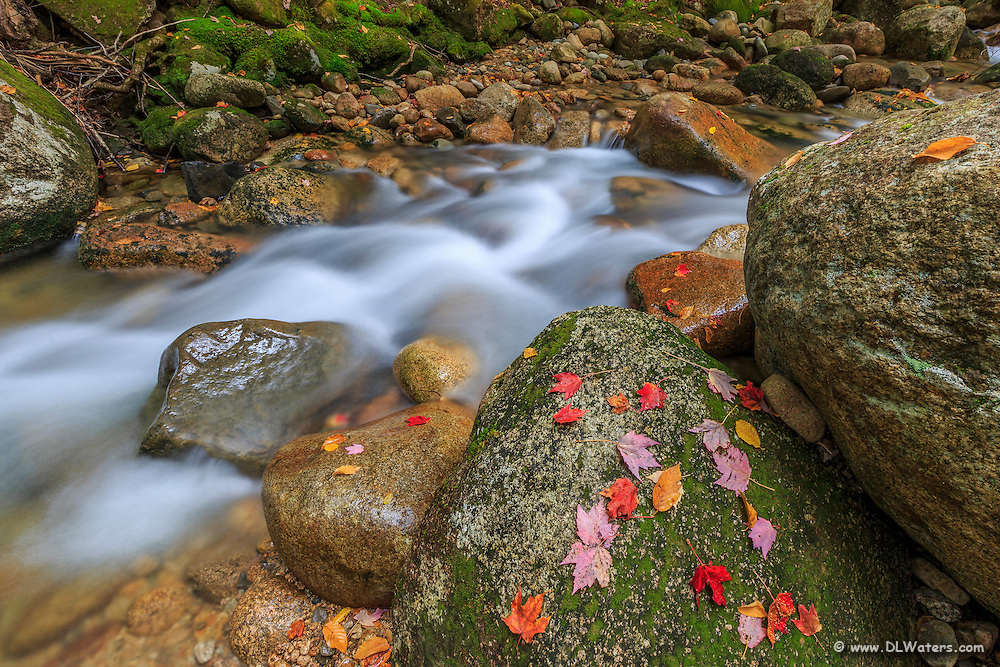 Cascade on Sabbaday Brook in the White Mountains of NH.