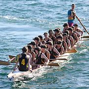 Wellington Dragonboat Festival