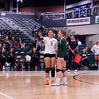 2nd year setter Satomi Togawa (5) of the Regina Cougars in action during Women's Volleyball home opener on October 20 at Centre for Kinesiology, Health and Sport. Credit: Arthur Ward/Arthur Images