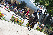 Mathilde Hannel - Webster<br /> FEI European Dressage Championships for Young Riders and Juniors 2013<br /> © DigiShots
