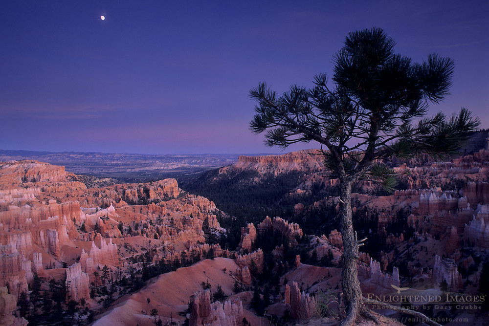 Evening moonrise over Bryce Canyon Bryce Canyon National Park, UTAH