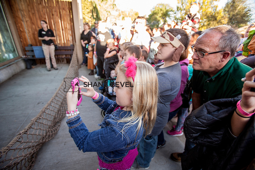 10/8/16 5:45:53 PM --  SFHS All-Employee Safari at the Tulsa Zoo. <br /> <br /> Photo by Shane Bevel