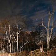 Moonlit night over Skyline Drive. Shenandoah National Park. Virginia