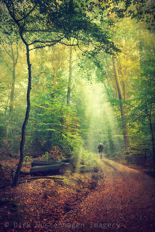 Man walking through a light drenched forest<br /> texturized photo