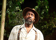 Fences<br />