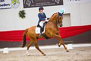 Jeanine Nieuwenhuis - TC Athene<br /> CDI Zeeland Outdoor 2019<br /> © DigiShots