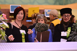 Judging is in progress at the PHS Flower Show. 'Explore America' is the theme for the 2016 edition of the Pennsylvania Horticulture Society Flower Show. The annual show, the largest in its kind, is held at the Pennsylvania Convention Center in Center City Philadelphia PA., and runs till March 13.