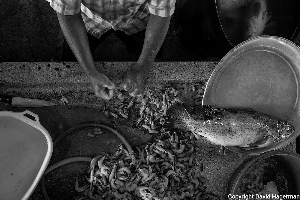 A fish monger in George Town's Campbell Street Market shells prawns for sale to local restaurants. Penang, Malayisa
