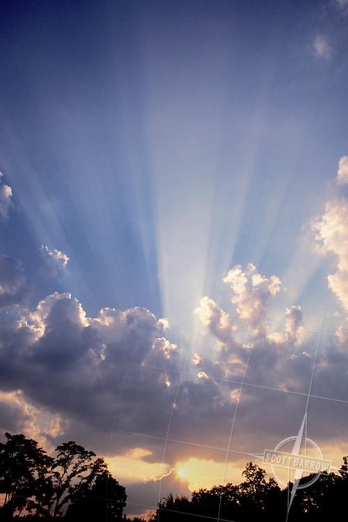 Sun Rays Through Cumulonimbus Clouds over trees.