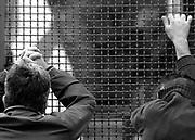 luogo : Napoli (Scampia) - data : 30 novembre 2004 - titolo : perquisizioni a scampia<br /> ( Servizio inerente i fatti criminosi avvenuti in Campania e a Napoli nell'ultimo decennio )<br /> copyright Stefano Renna fotografia.<br /> <br /> VAI ALLE FOTO IN ARCHIVIO<br /> http://stefanorenna.photoshelter.com/gallery/03-MANETTE/G0000KWxrZcFd4XQ/C0000ujr_mqfrFyY
