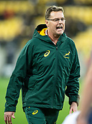 South Africa head coach Rassie Erasmus during the Rugby Championship match between the New Zealand All Blacks & South Africa at Westpac Stadium, Wellington on Saturday 27th July 2019. Copyright Photo: Grant Down / www.Photosport.nz