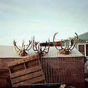 KIVALINA, ALASKA - 2016: