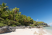 Tropical sandy beach on Henderson island, part of the Pitcairn islands.