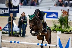 PIMENTA ALVES Luiz Felipe (BRA), GB Celine<br /> Göteborg - Gothenburg Horse Show 2019 <br /> Longines FEI Jumping World Cup™ Final<br /> Training Session<br /> Warm Up Springen / Showjumping<br /> Longines FEI Jumping World Cup™ Final and FEI Dressage World Cup™ Final<br /> 03. April 2019<br /> © www.sportfotos-lafrentz.de/Stefan Lafrentz