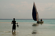 Southern Africa. Mozambique. Bazaruto Archipelago.  Dhow safari. Fisherman returning to his dhow with lobster..DVD0014