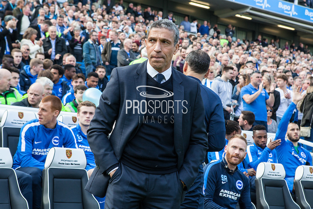 Chris Hughton during the Sky Bet Championship match between Brighton and Hove Albion and Burnley at the American Express Community Stadium, Brighton and Hove, England on 2 April 2016. Photo by Bennett Dean.
