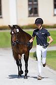 Dressage Ponies EC 2016