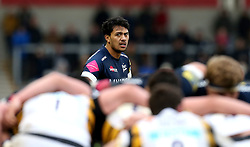 Denny Solomona of Sale Sharks watches a scrum being contested - Mandatory by-line: Robbie Stephenson/JMP - 19/02/2017 - RUGBY - AJ Bell Stadium - Sale, England - Sale Sharks v Wasps - Aviva Premiership