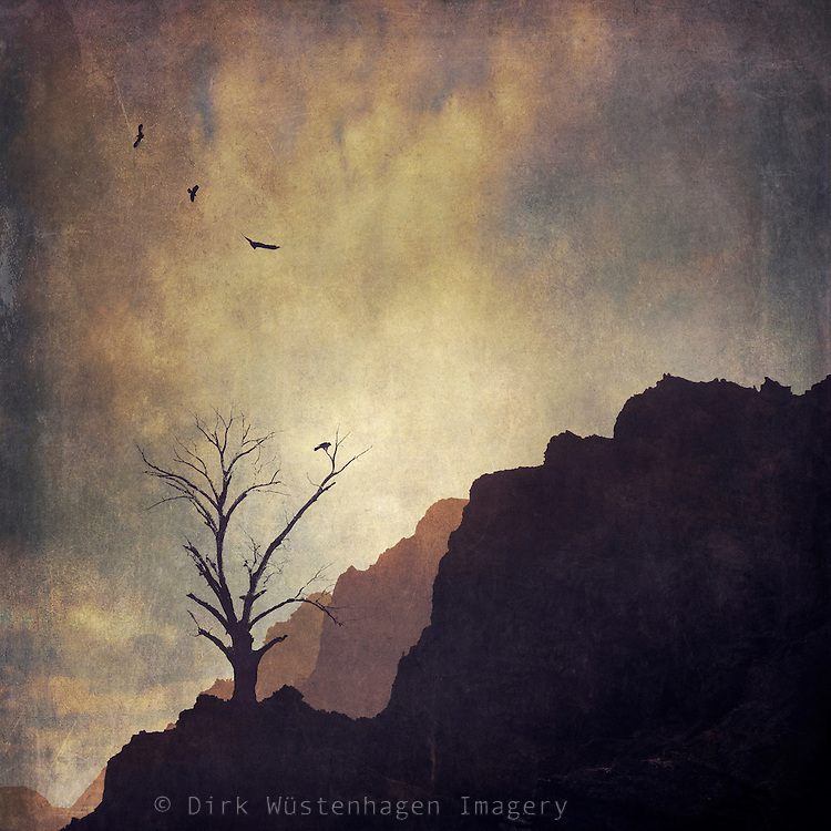 Mist mountains, birds and a leafless tree - manipulated photograph<br />