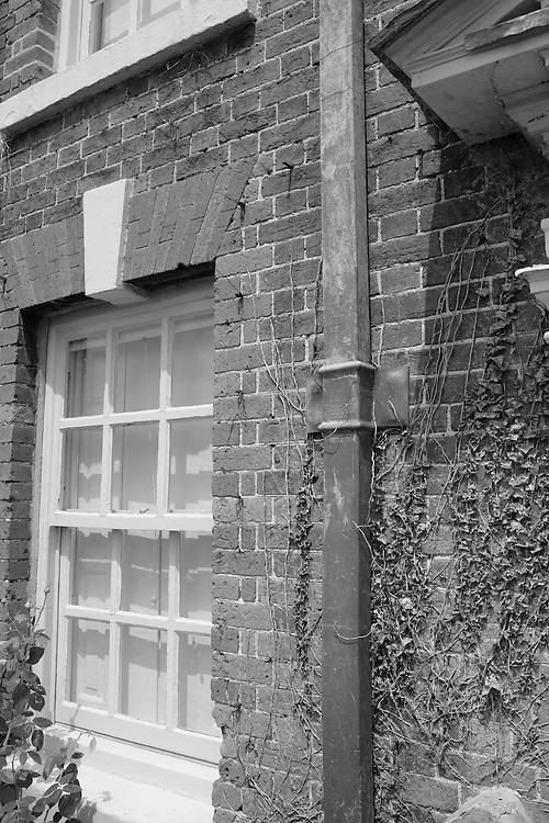 Georgian Facade Brick & Dead Vine -Salisbury, UK - Black & White
