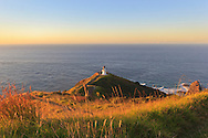 Cape Reinga is as far north as you can drive. See two oceans collide and discover 'the place of leaping', where Maori spirits begin their final journey