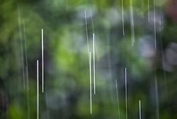 The Effect of Shutter Speed on Falling Rain Set 3-#6