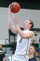 07 January 2017:  Colin Bonnett during an NCAA men's division 3 CCIW basketball game between the Wheaton Thunder and the Illinois Wesleyan Titans in Shirk Center, Bloomington IL