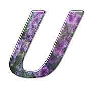 The Capitol Letter U Part of a set of letters, Numbers and symbols of 3D Alphabet made with a floral image on white background