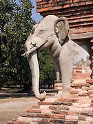 elephant statue encircling chedi; close-up; Elephant Circled Monastery; Wat Chang Lom; Sukothai Historical Park; Sukothai Province; Thaiiland