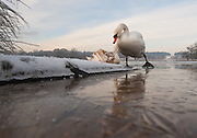 Much of the country is in the grip of freezing weather with snow and ice disrupting transport as people return to work after the Christmas break. The MET office confirmed that the Christmas period has been the coldest for 25 years with temperatures as low as -17C being recorded in Scotland.<br /> <br /> Marco Secchi /XianPix<br /> Tel 0771 7298571<br /> ms@msecchi.com