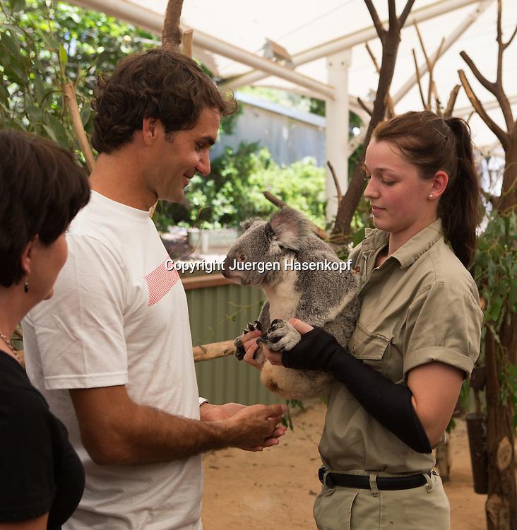 Mitarbeiterin der Lone Pine Koala Sanctuary ueberreicht Tennis Profi Roger Federer (SUI) den Koala Tinkerbell in Brisbane,Queensland,Australia,