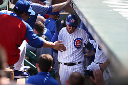 September 15, 2017 - Chicago, IL, USA - The Chicago Cubs' Kris Bryant is congratulated in the dugout after hitting a home run in the fourth inning against the St. Louis Cardinals at Wrigley Field in Chicago on Friday, Sept. 15, 2017. The Cubs won, 8-2. (Credit Image: © Terrence Antonio James/TNS via ZUMA Wire)