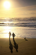 People walking their dog along the shore silhouetted at Ocean Beach, San Francisco.